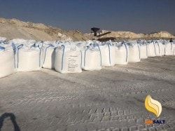 africa salt
