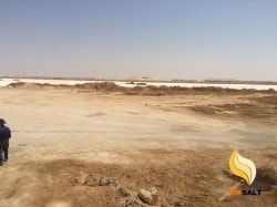salt egypt