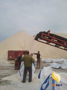 Egyptian bulk salt