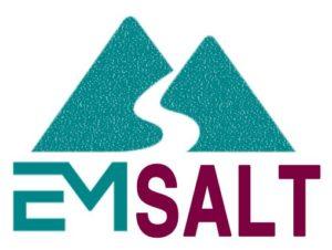 EM Salt Logo
